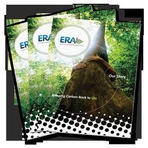 11x17 Brochure example