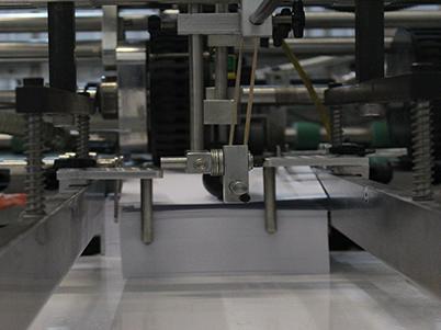 Printing Bonita Sprigs