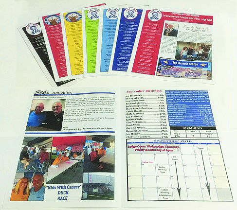 Various Full Color Newsletter Formats