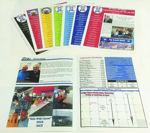 Various Full Color Newsletter Formats