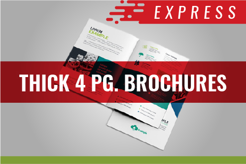 4 PG. BROCHURE(COVER) - Express