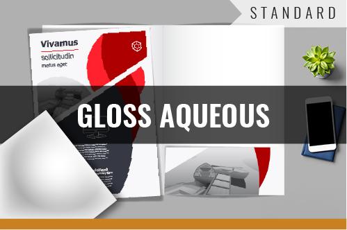 STANDARD - GLOSS AQUEOUS