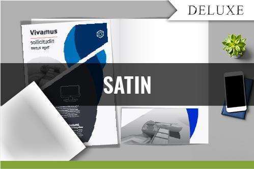DELUXE - SATIN AQUEOUS