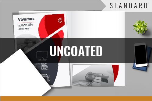 STANDARD - UNCOATED