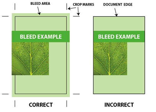 Bleed Example