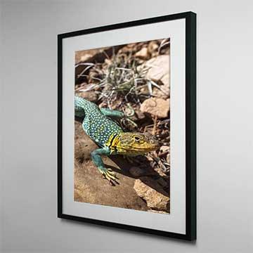 Framed Canvas Prints Online - Wholesale Framed Art